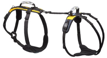 x-large-harness